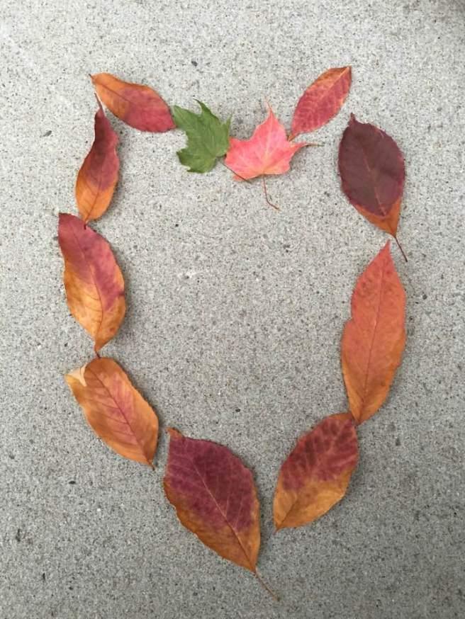 leaf-heart